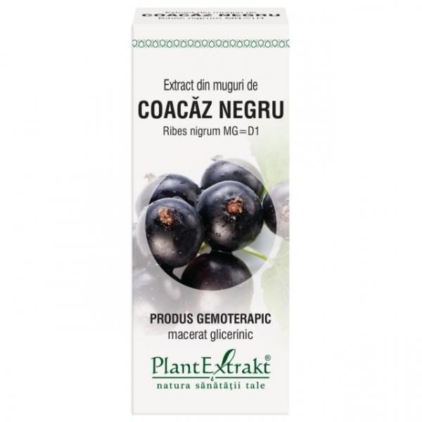 Extract de Coacaz Negru (Muguri) 50ml PlantExtrakt 0