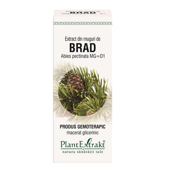 Extract din Muguri de Brad 50ml PlantExtrakt [0]