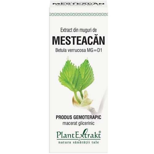 Extract din Muguri de Mesteacan 50ml PlantExtrakt 0