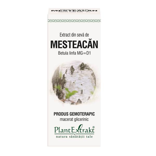 Extract din Seva de Mesteacan 50ml PlantExtrakt 0