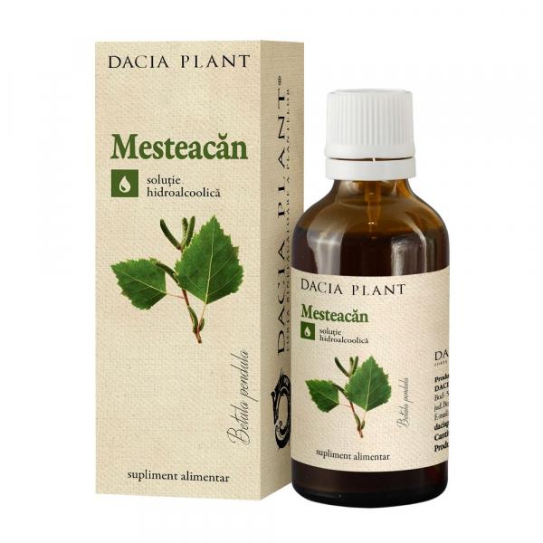Tinctura de Mesteacan Dacia Plant 50 ml 0