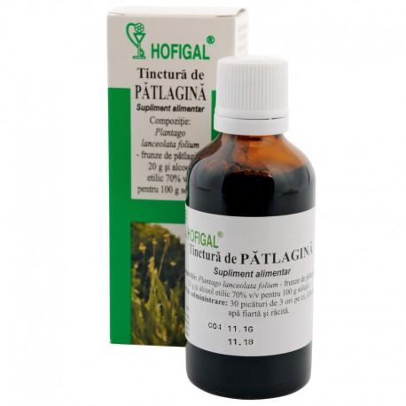 Tinctura de Patlagina 50ml Hofigal 0