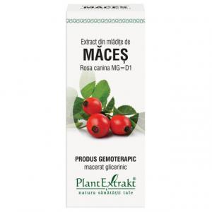 Extract de Macese (Mladite) 50ml PlantExtrakt