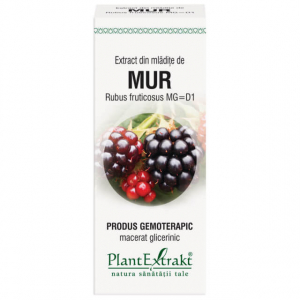 Extract de Mur (Mladite) 50ml PlantExtrakt