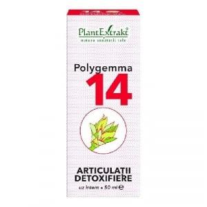 Polygemma 14 Articulatii Detoxifiere 50ml PlantExtrakt [0]