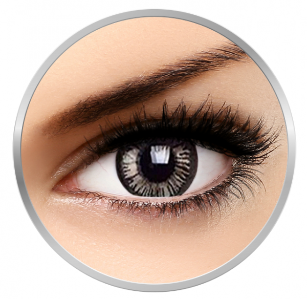 Phantasee Beautiful Eyes Lovely Grey - Grey Colored Contact Lenses quarterly - 90  wears (2 lenses/box)