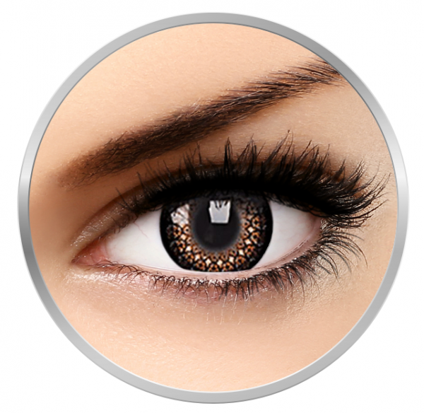 ColourVUE Eyelush Brown - Brown Contact Lenses quarterly - 90 wears (2 lenses/box)