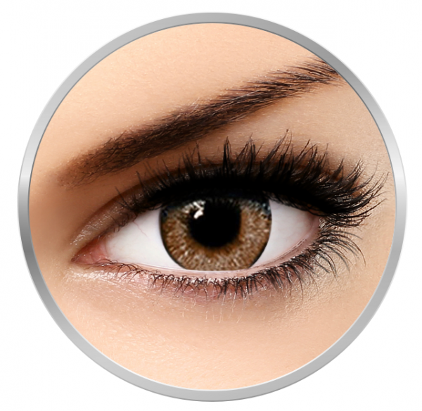 Soleko Queen's Solitaire Spice - Brown Contact Lenses quarterly - 90 wears (2 lenses/box)