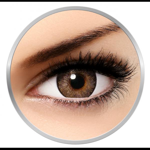 Alcon / Ciba Vision Freshlook One Day Pure Hazel - daily hazel colored contact lenses - 5 wears (10 lenses / box)