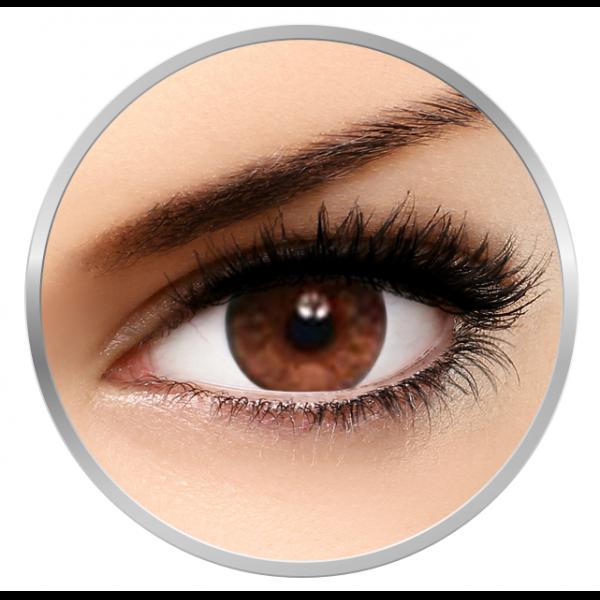 Bausch & Lomb Soflens Natural Colors Dark Hazel - monthly dark hazel colored contact lenses - 30 wears (2 lenses / box)