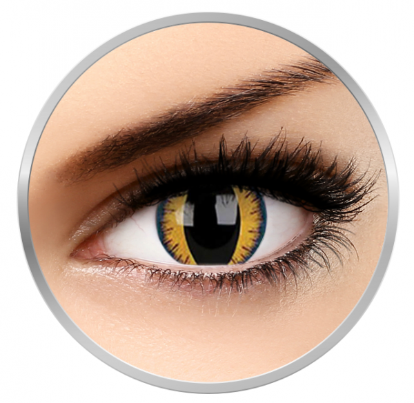 Phantasee Fancy Wolf Moon - Yellow/Black Contact Lenses yearly - 360 wears (2 lenses/box)
