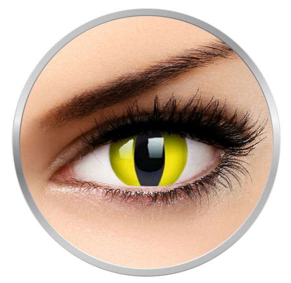 Phantasee Fancy Yellow Cat - Yellow Contact Lenses yearly - 360 wears (2 lenses/box)