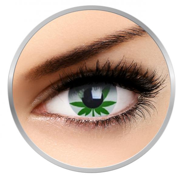 Phantasee Fancy Marijuana - Green/White Contact Lenses yearly - 360 wears (2 lenses/box)