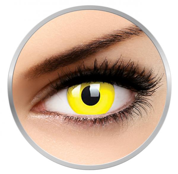 Phantasee Fancy UV Yellow - Yellow Contact Lenses yearly - 360 wears (2 lenses/box)