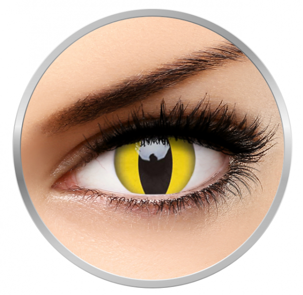 MaxVue Vision Crazy Cat Eye | yellow colored lenses - 360 wears (2 lenses / box)