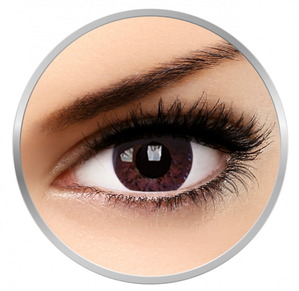 MaxVue Vision Diva Choco - Brown Colored Contact Lenses quarterly - 90 wears (2 lenses/box)