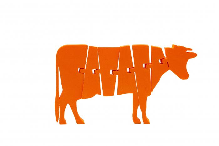 Flexi Cow - Portocaliu [0]