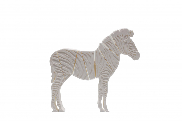 Flexi Zebra - Alb [0]