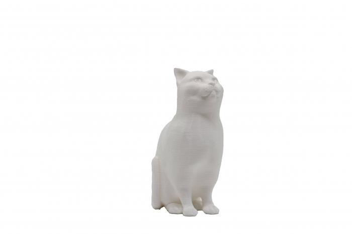 Set de pictat figurina de Pisică, culori acrilice 6x3ml [0]