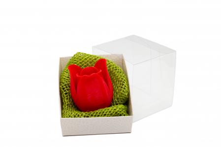 3D Tulip [0]