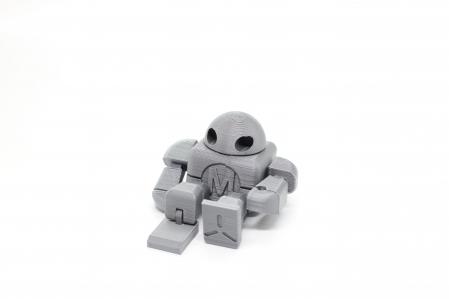 Flexi Robo [0]