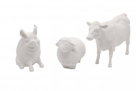 Set de pictat figurine Animale Domestice My little farm (3 buc), culori acrilice 6x3ml [1]