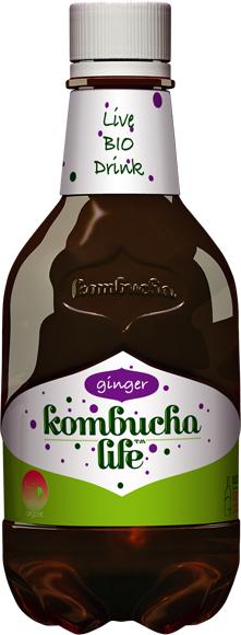 Kombucha life cu ghimbir ECO 330ml [0]