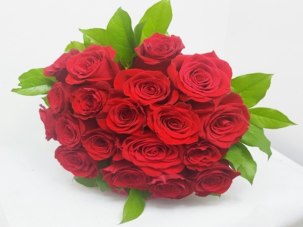 19 Trandafiri rosii 0