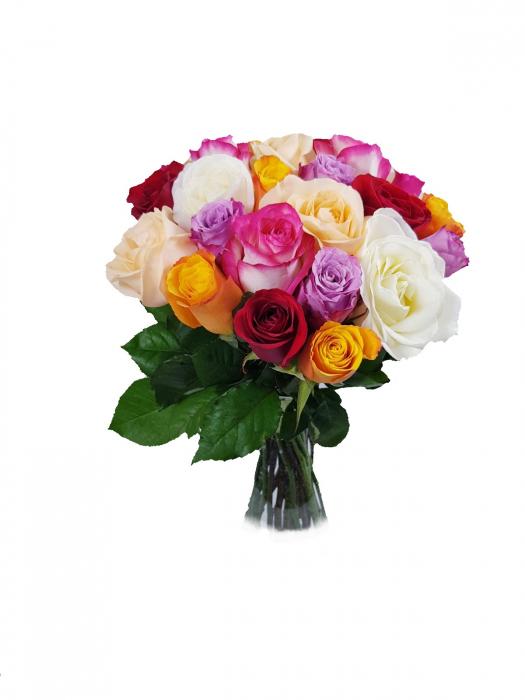 25 Trandafiri mixt 0