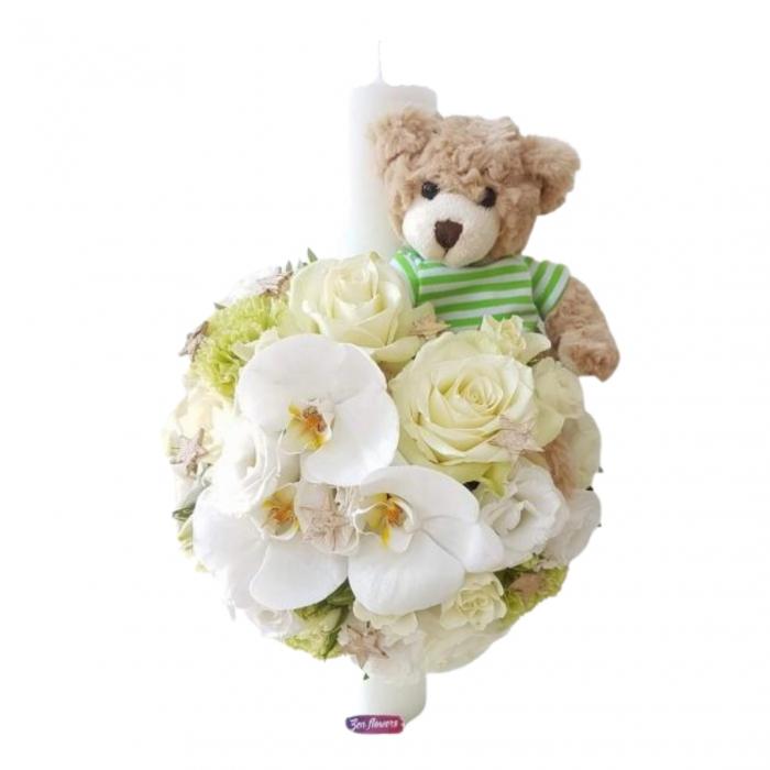 Baby bear [1]