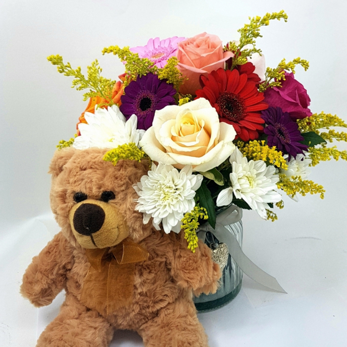 Teddy bear [2]