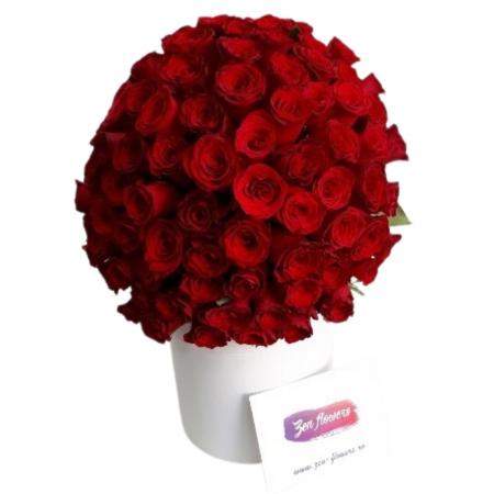 101 Trandafiri rosii [0]