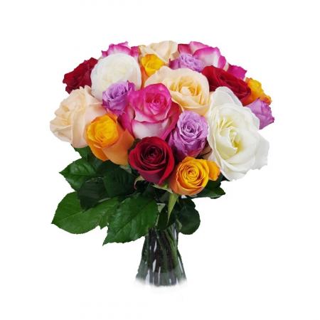 25 Trandafiri mixt [0]