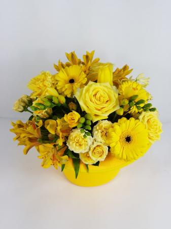 joben si flori galbene [1]