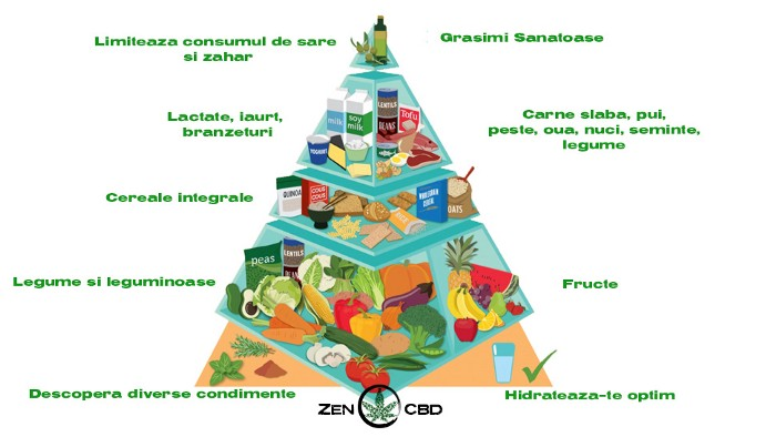 alimentatie sanatoasa protectie sistem imunitar