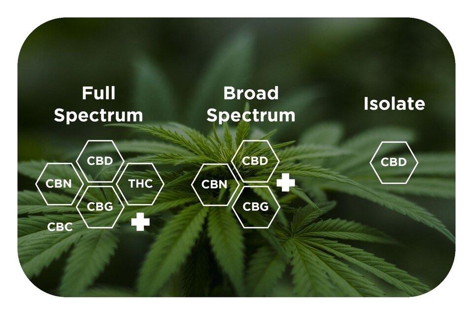 Tipuri de ulei canepa CBD: Full si Broad spectrum, cu cristale Canabidiol