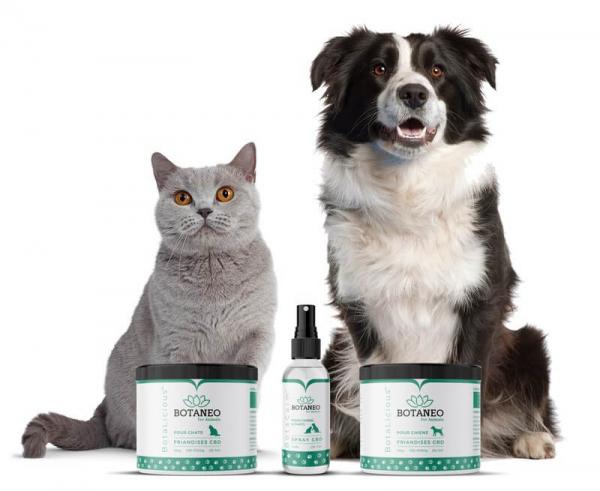 BotaCalm™ - Spray CBD pentru animale de companie - Organic, 100% Natural - Testat si acreditat de catre Fundacion Canna 3