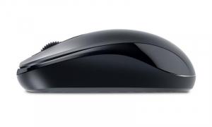 MOUSE GENIUS DX-110 BLACK USB1