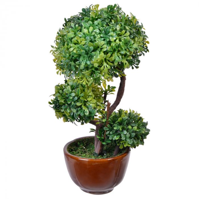 Ghiveci maro cu plantă decorativă(Bonsai) 0