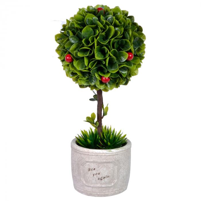 Ghiveci  crem cu plantă Bonsai [0]