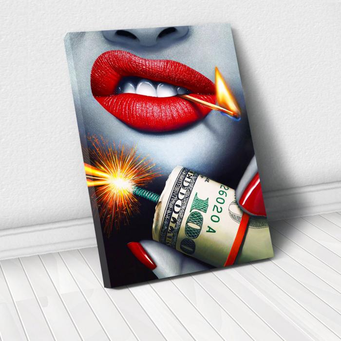 Tablou Canvas - Dollars Bomb 0