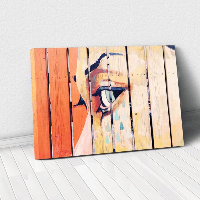 Tablou Canvas - Fence art [0]