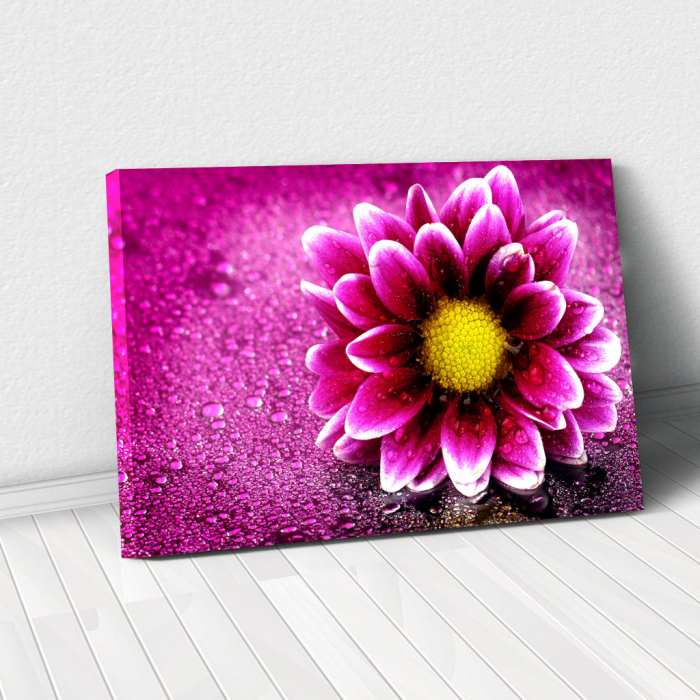 Tablou Canvas - Purple flower 0