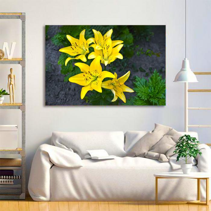 Tablou Canvas - Lilies 1