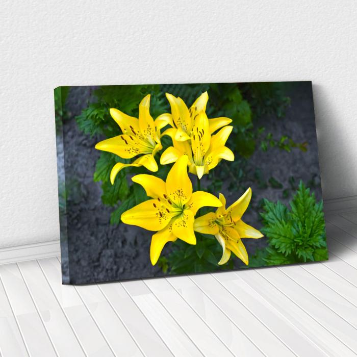 Tablou Canvas - Lilies 0