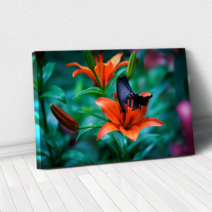 Tablou Canvas - Orange lilies 0