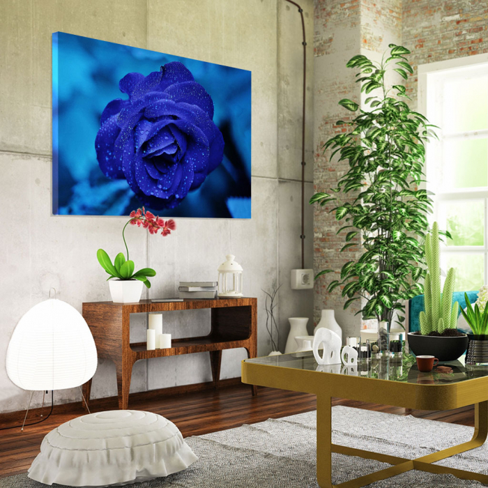 Tablou Canvas -Trandafir Albastru 1