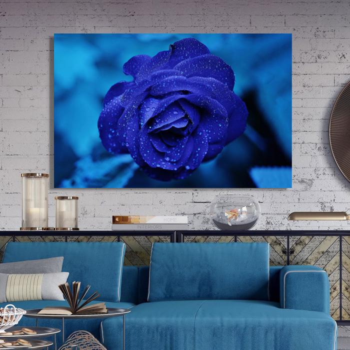 Tablou Canvas -Trandafir Albastru 2
