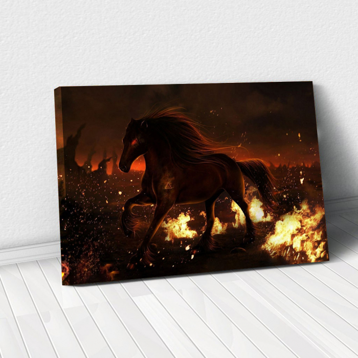 Tablou Canvas - Hell horse 0