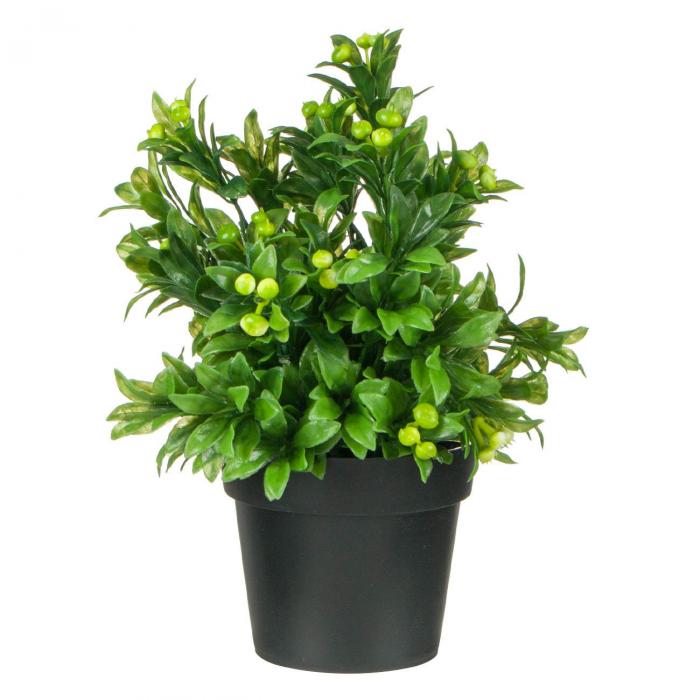 Ghiveci decorativ cu planta verde - 25cm 0